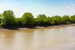 简单的河 库存图片