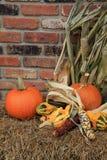 简单的秋天场面用南瓜、南瓜和印第安玉米 库存照片