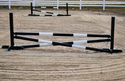 简单的马跳 库存照片