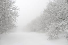 简明冬天风景、雪漂泊和分支 图库摄影