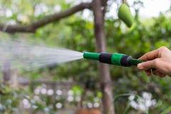 水管喷管 免版税库存图片