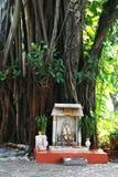 管国im Bhodisatva雕象寺在庭院里 免版税库存图片