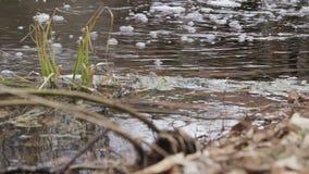 从管子的肮脏的水流量 股票录像
