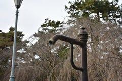管子水在公园 免版税库存图片