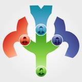 管理结构树 免版税图库摄影