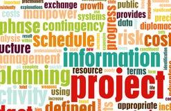 管理项目 免版税库存图片