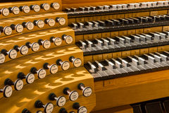 管风琴 免版税库存照片