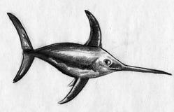 箭鱼剪影 库存图片