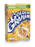 箱在白色的金黄Grahams麦子谷物 免版税库存图片