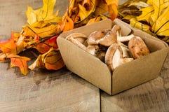 箱子与叶子的新鲜的Portobella蘑菇 免版税库存照片