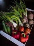 箱子各种各样的有机菜 免版税库存照片