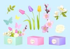 箱子和花设置了海报传染媒介例证 免版税库存照片