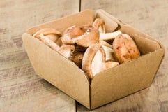 箱子新鲜的Portobella蘑菇 库存照片