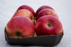 箱子用新鲜的红色苹果 库存图片
