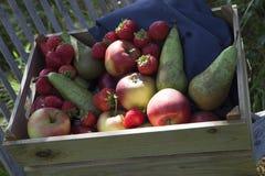 箱子用果子在autum的果树园 库存照片