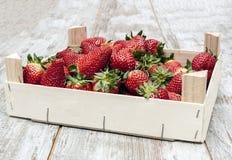 箱子草莓 免版税库存照片