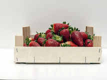 箱子草莓 免版税库存图片