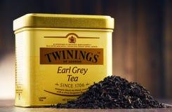 箱子Twinings厄尔灰色茶 库存照片