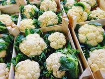 箱新鲜的有机花椰菜在菜商店 免版税图库摄影