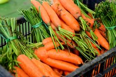 箱有机红萝卜在一个绿色市场上 库存照片