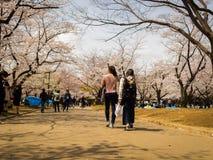 箱根,日本- 2017年7月02日:走和享受看法的未认出的夫妇在hanami公园在樱花期间 免版税库存图片