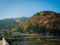箱根,日本- 2017年7月02日:走在桥梁和享用在hanami公园的未认出的人民在樱桃期间 免版税图库摄影