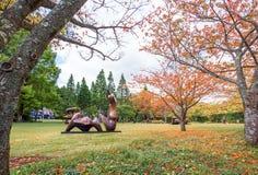 箱根,日本- 2017年11月5日:雕塑露天mus 库存照片