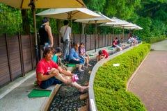 箱根,日本- 2017年7月02日:未认出人refresing他们在箱根露天博物馆结算水的里面或 免版税图库摄影