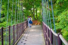 箱根,日本- 2017年7月02日:走在桥梁的未认出的人民在箱根露天博物馆 免版税库存照片