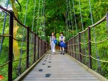 箱根,日本- 2017年7月02日:走在桥梁的未认出的人民在箱根露天博物馆 免版税图库摄影