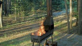 篝火从火柴梗喷发 影视素材