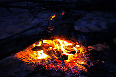 篝火在夏夜,灼烧的日志 图库摄影