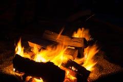 篝火在夜 库存图片