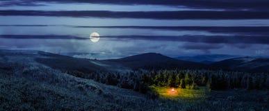 篝火在山小山的具球果森林里在晚上 免版税库存图片