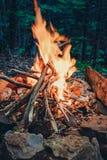 篝火在岩石的森林 图库摄影