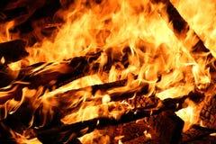 篝火在晚上 灼烧的木头 免版税库存图片