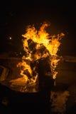 篝火在晚上 库存照片