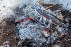 篝火在森林里在冬天 俄国 免版税库存图片