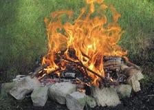 篝火在森林里 免版税库存照片