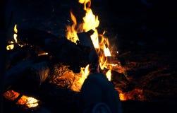 篝火在黑背景的晚上在森林里,自然本底 免版税库存图片