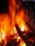 篝火火焰发怒 库存图片