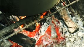 篝火火焰 影视素材