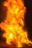 篝火灼烧的人钝汉在一个白色夏夜 免版税库存照片