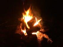 篝火烧明亮在晚上 免版税库存照片