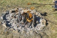 篝火用香肠 免版税库存照片