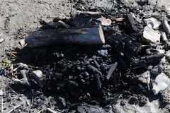 篝火的遗骸,被烧焦的木头 免版税库存图片