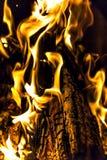 篝火,火,日志在晚上关闭  库存图片