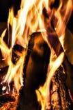 篝火,火,日志在晚上关闭  免版税图库摄影