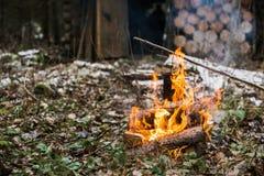 篝火,火 休息在止步不前的森林 狩猎小屋 库存照片