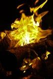 篝火 库存图片